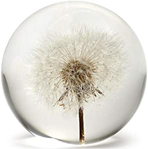 Dynasty Gallery FloraCulture Paperweight Dandelion