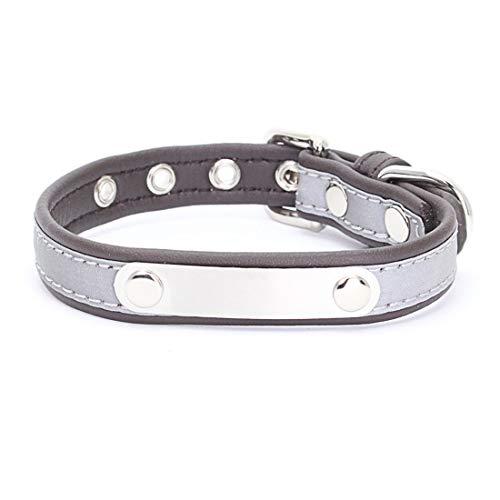 Zfy Hond kraag roestvrij staal huisdier kraag hond riem hond ketting, S, H