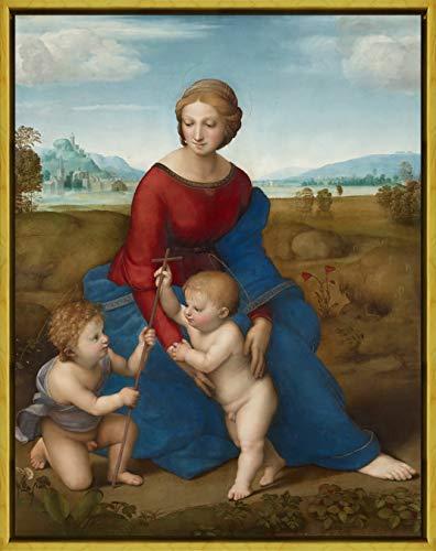 Berkin Arts Framed Raffaello Sanzio Giclee Canvas Print Paintings Poster Reproduction(Madonna in The Meadow)