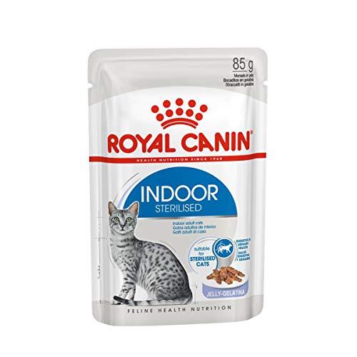 ROYAL CANIN Indoor Sterilised Gatos, Bocaditos en Gelatina, Caja 12 x 85 gr ⭐