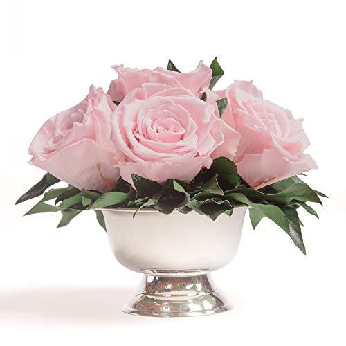 ROSEMARIE SCHULZ Heidelberg Infinity Rosen in silberfarbener Schale 6 ewige Rosen konserviert Rosenbox Blumenbox (Rosa, 6 Rosen)