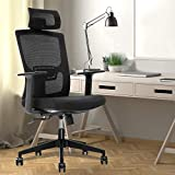 Home Office Chair,Home Comfort Chairs,High Back Adjustable Home Desk Chair with Lumbar Support,High Back with Breathable Mesh,Thick Seat Cushion,Adjustable Head & Lumbar Support