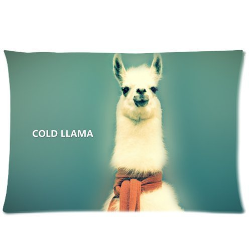 Denise Love Hipster Llama Lama-2 Pillow Hülles Cover,pillow covers decorative 20x30inch (Two sides)