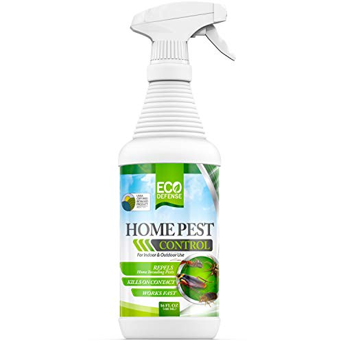 Eco Defense USDA Biobased Pest Control Spray - Ant, Roach, Spider, Bug Killer and Repellent - Natural Indoor & Outdoor Bug Spray - Child & Pet Friendly