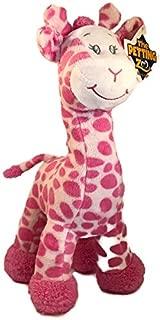 bridget the giraffe