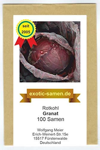 Rotkohl - Granat - 100 Samen