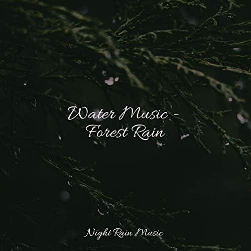 Ready Baby Music!, Instrumental & Sleep Lullabies for Newborn