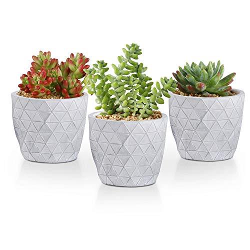 T4U 10cm Zement Sukkulenten Töpfe 3er-Set, Klein Mini Beton Blumentopf Übertopf für Kakteen Moos Zimmerpflanzen