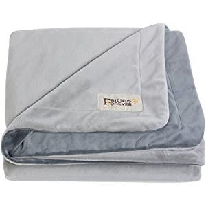 Friends Forever Durable Dog Blanket for Couch Protection | Two Tone Reversible Pet Hair Resistant Blanket for Dogs Cats Bed Kennel Crate Car Seat – Soft Velvet, Warm Fleece (Medium 45×35)