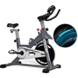BARWING Exercise Bike Stationary Indoor Cycling Spinning Workout Bike with Magnetic Resistance for Home Use Gray