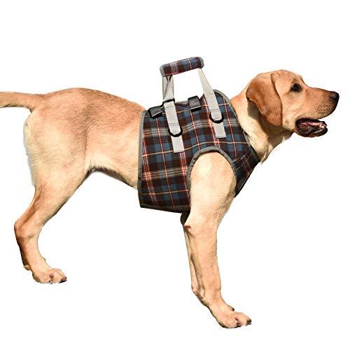 EVEL Arnés de Soporte para Perros para piernas Delanteras y traseras Chaleco de rehabilitación de elevación Malla Ajustable Acolchada con asa para Perros discapacitados débiles (XL, Frente Azul)