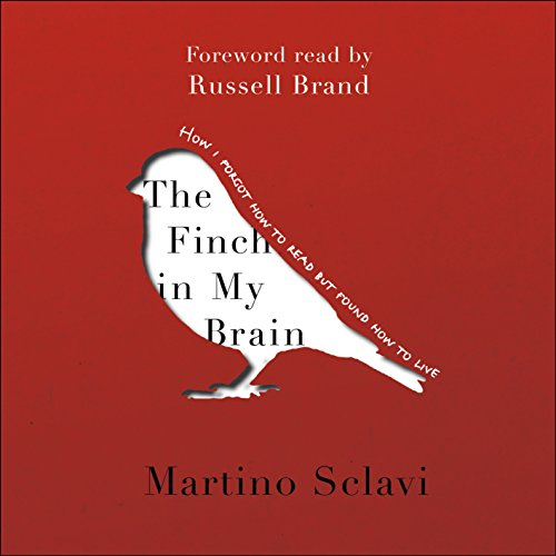 The Finch in My Brain cover art