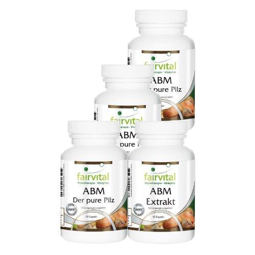 ABM (Agaricus Blazei Murill) Vierteljahresversorgung mit Pilzpulver und Pilzextrakt, natürlich, vegan, 4x90 Kapseln