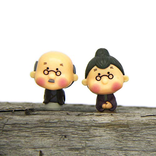 SHUHUAN Alte Oma Fee Gartenzwerg Tiere Moosterrarium Home Desktop Dekor Handwerk Bonsai Puppenhaus Miniaturen