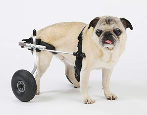 K9 Carts Small Dog Wheelchair