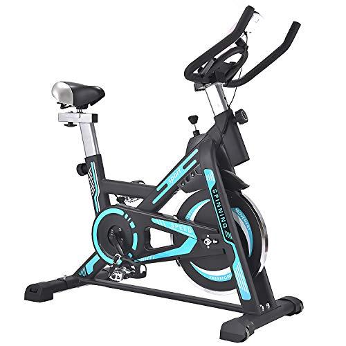 QQLK Bicicleta EstáTica Indoor - Bicicleta De Spinning - Ejercicio Bicicleta Entrenamiento AeróBico, Cambio Silencioso, Carga De 200 Kg,Azul