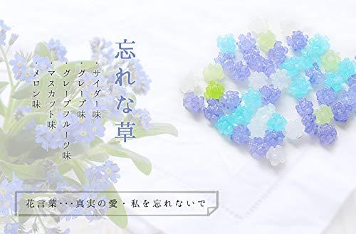 プチギフト 退職 お礼 お菓子 メッセージ入り 金平糖(こんぺいとう)30g 12個セット (忘れな草(お世話になりました))