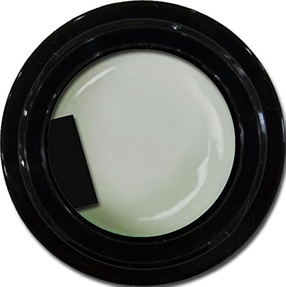 暗黙より良いキャンベラカラージェル enchant color gel M802 PuffGray 3g/ マットカラージェル M802 パフグレー 3グラム