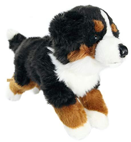 Zaloop Berner Sennenhund ca. 38 cm Plüschtier Kuscheltier Stofftier Hund 14