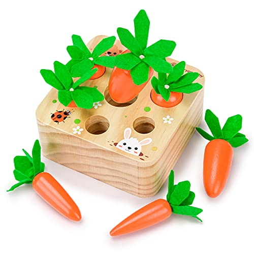Toys for 12 18 24 Month Old Boy Girl, Kids Wooden Toy Gifts for 1 2 3...