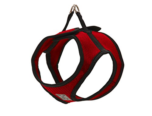 RC Pet Products Step in Cirque Soft Walking Dog Harness, Small, Red