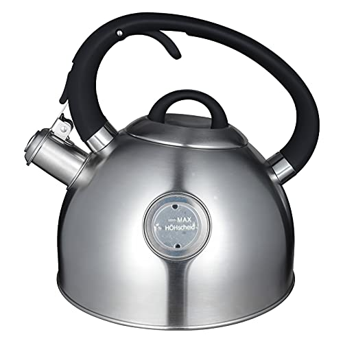 Tea Kettle, 2.6 Liter Stovetop Whistling Teakettle with Visible Window, Ergonomic Handle Food Grade Stainless Steel Teapot for Tea, Coffee, Milk Silver