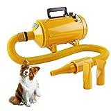Wilktop Secador de Cabello Profesional Secador Perro, Secador de Pelo Ajustable Velocidad del Viento y Rango de Temperatura para Peluquería Secador de Mascotas Secador de Pelo (2600W)