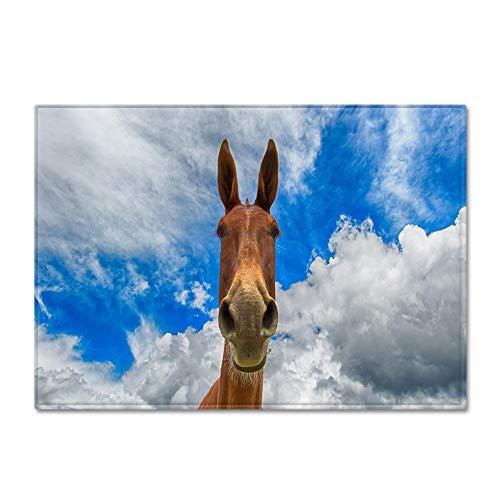BSZHCT Alfombra De Salón Moderna Azul Cielo y Nubes Blancas Burro Animal Alfombra Franela Pelo Corto Antideslizante Dormitorio Cuarto de los niños Estera de Yoga Facil de Mantener Alfombra 60x90 cm