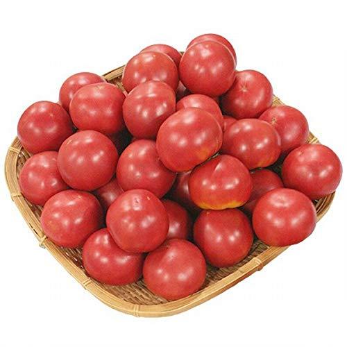【熊本県他西日本産】 とってもあま~い トマト 1箱 約4kg