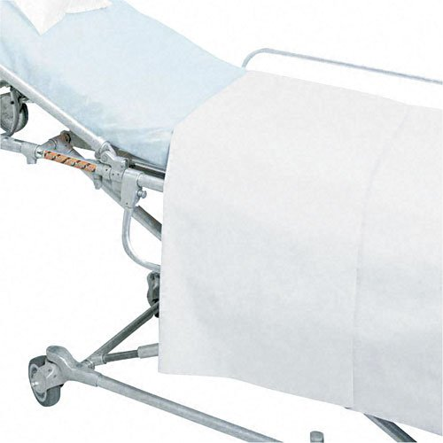 Graham Professional Products 301 White Drape Sheets, 40