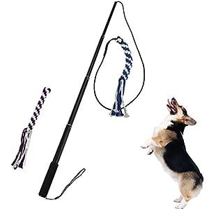 Petacc Chien Teaser jouet interactif Cat Training Wand rétractable pour animal domestique d'entraînement Fouet Corde en coton avec 2jouets, Noir