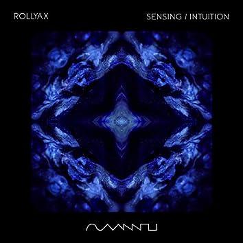 Sensing / Intuition