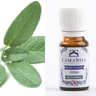 Aceite esencial salvia BIO (salvia officinalis) - 10ml -