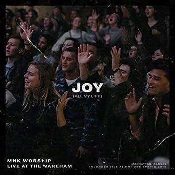 Joy (All My Life) [Live]
