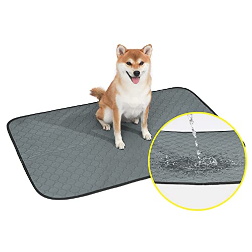 DUOITA Reusable Pee Pads for Dogs, 2 Pack, Washable Puppy Potty Training Pads, 24