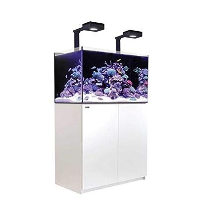 Red Sea Reefer Deluxe Aquarium pour Aquarium Blanc 250 l