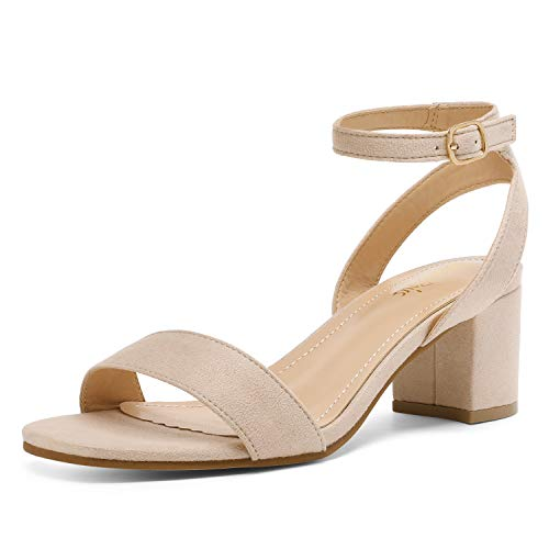 DREAM PAIRS Women's Nude Suede Open Toe Ankle Strap Low Block Chunky Heels Sandals Party Dress Pumps Shoes Size 8.5 M US Carnival