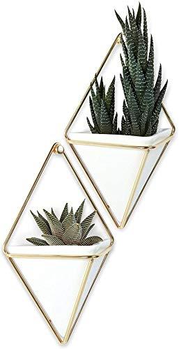 Jardinera Colgante DIF y Maceta geométrica para decoración de Paredes: Ideal para suculentas, Plantas aéreas, Mini Cactus (Juego de 2), Blanco/Dorado, pequeño