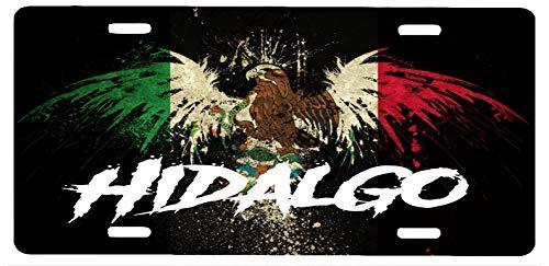 Hidalgo Mexico Aluminum License Plate Sign Placa 6' x 12'