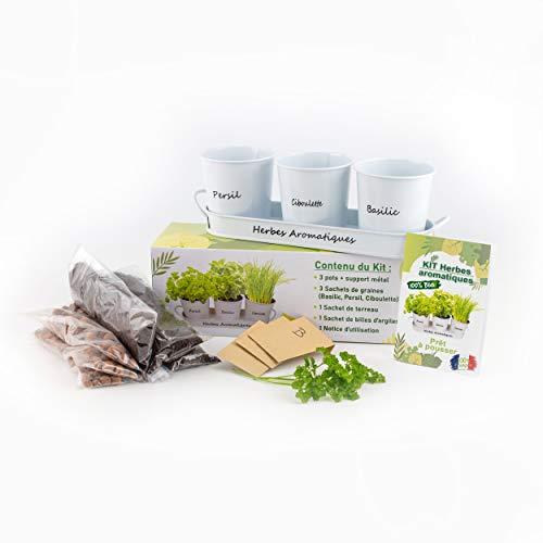 Kit d'herbes aromatiques prêt à pousser - 100% Biologique - Pratique - Écologique - Kit d'aromates complet - Potager intérieur - Pour faire pousser facilement Basilic, Ciboulette, et persil