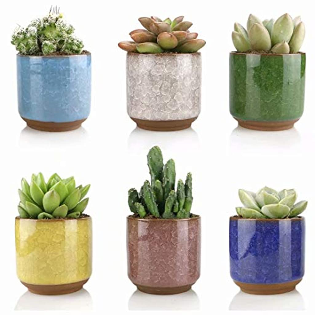 Ceramic Succulent Planter Pots -6pcs 2.5 Inch Small Ice Crack Succulent Pots,Cactus Clay Pots Containers Window Boxes with Drainage