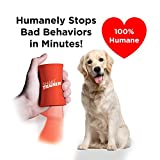 HOW IT WORKS - Barking or other behavior problems? Shake things up! shakeTrainer is a fast, effective, and proven way to stop your dog from barking, chasing, chewing, digging, and other unwanted behaviors - permanently. Handheld and easy to use, it e...