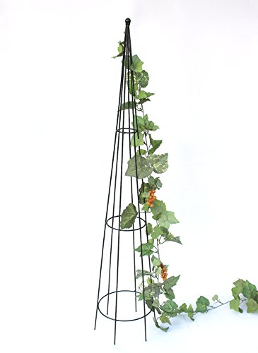 Kapelanczyk Rankpyramide Art.304 Rankhilfe 120 cm Pyramide Kletterhilfe Bodenstecker Grün