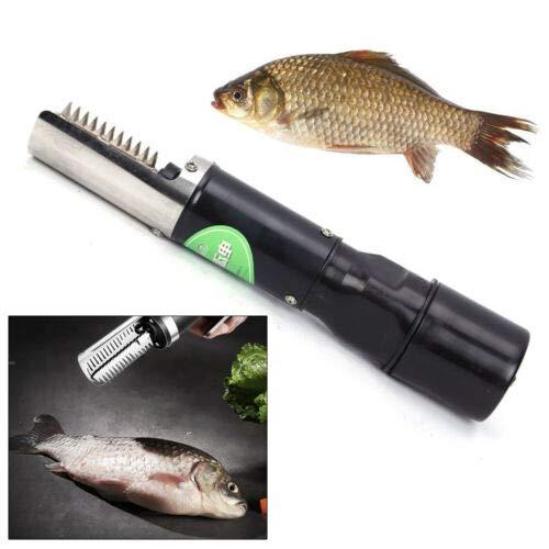 Raspador eléctrico de acero inoxidable para escamas de pescado, 120 W