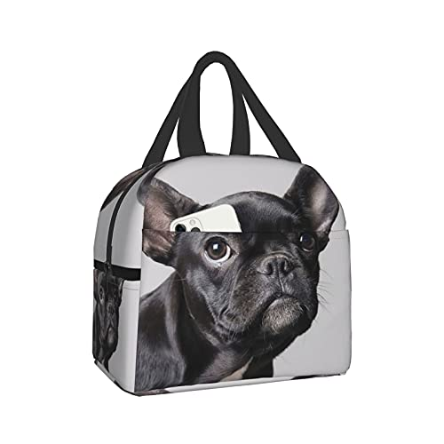 French Bulldog Puppy Looking Up On Gray Lunch Bag Reusable Cooler Insulated Tote Bag Leakproof Lunch Box For Women&Men Fishing