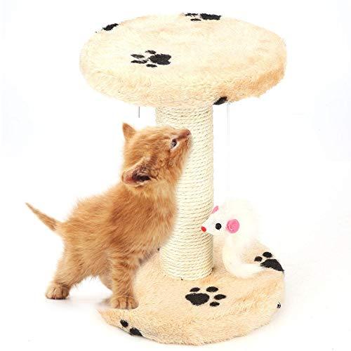 HEEPDD Poste rascador para Gatos, pequeño árbol para Gatos con Parte Superior Redonda, Cama de Descanso para Mascotas, Tabla de Escalada, rascador, Bola para Colgar, Juguete para Gatos pequeños
