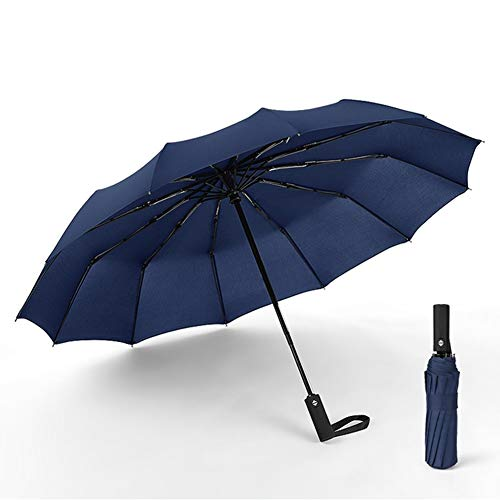 DXQDXQ Fold Portable Long Handle Automatic Umbrella Auto Open and Close 12 Ribs Rainproof Windproof 3 Fold Business Umbrella Outdoor Travel Umbrella for Men and Women Bag (Color : Blue)