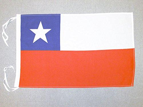 AZ FLAG Flagge Chile 45x30cm mit Kordel - CHILENISCHE Fahne 30 x 45 cm - flaggen Top Qualität