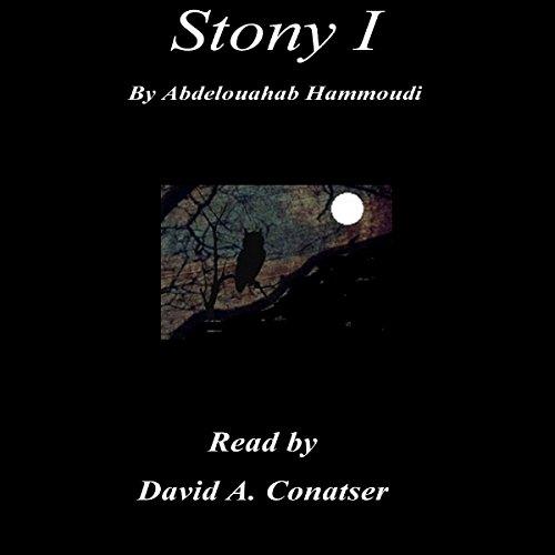 Stony I audiobook cover art