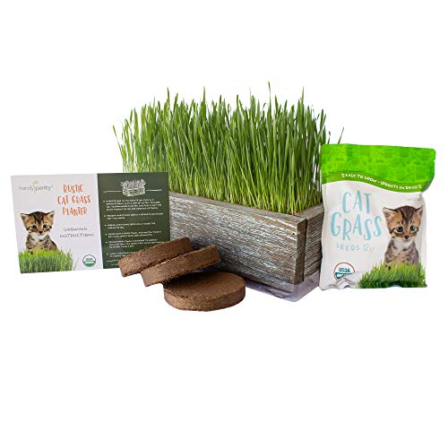 Organic Cat Grass Seeds Kit - Decorative Reclaimed Barnwood Style Organic Wheatgrass Seeds Planter - Aged Brown - Hairball Remedy for Cats, Healthy Pet Grass Supplement & Wheatgrass Growing Kit